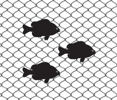 Decorative Nets - Nets & More