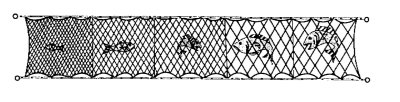 Gill nets various sizes